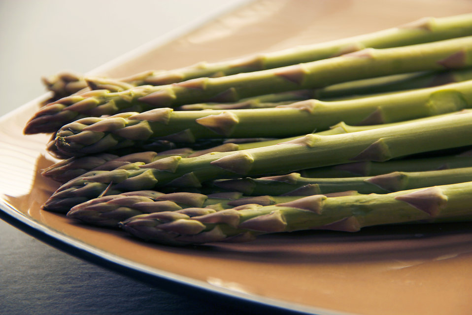 16040-a-plate-of-freshly-cooked-asparagus-pv